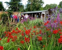 The wildlife and wellbeing garden at woodside