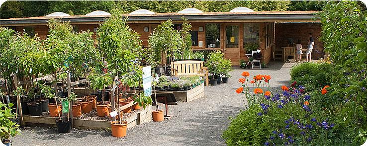 Woodside plant centre Nr Jedburgh