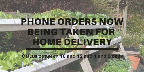 vegetable plants as background to home delivery announcement
